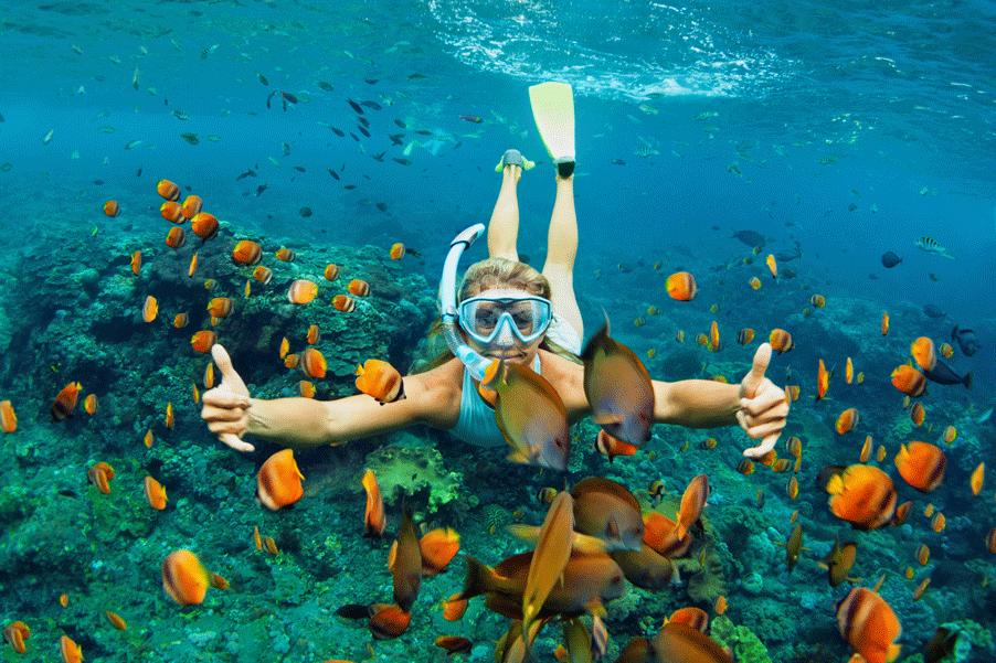 Snorkel-heaven